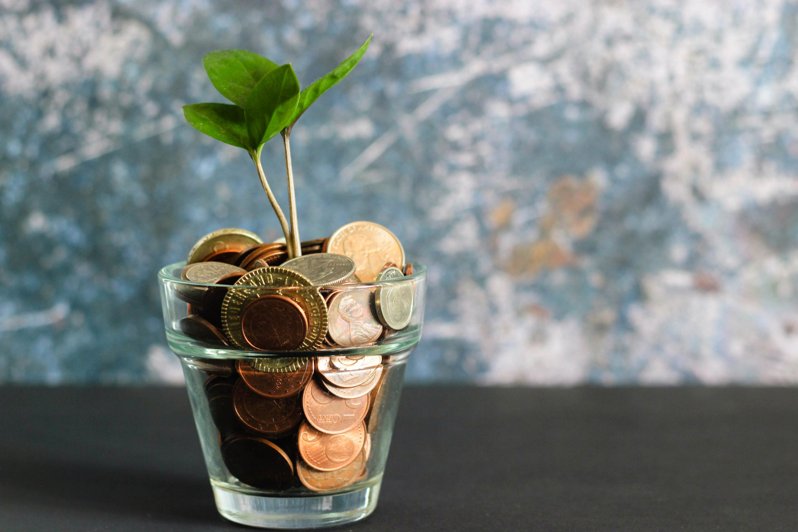 a cup of coins with a plant sprouting from above