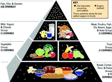 92-food-pyramid.jpg